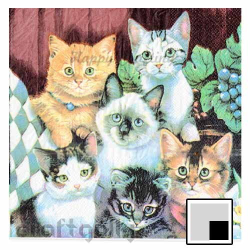 Decoupage Napkins #155 - 2 Ply - Pack of 1
