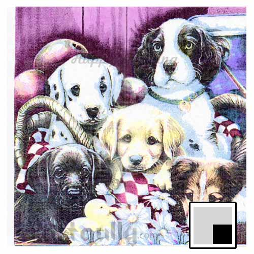 Decoupage Napkins #156 - 2 Ply - Pack of 1