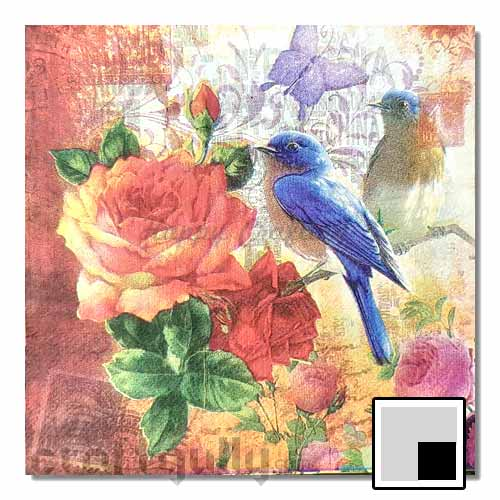 Decoupage Napkins #199 - 2 Ply - Pack of 1