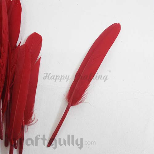 Feathers #2 - 100mm - Red - Pack of 2