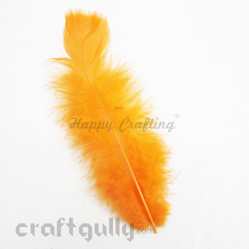 Feathers #3 - 160mm - Orange - Pack of 1