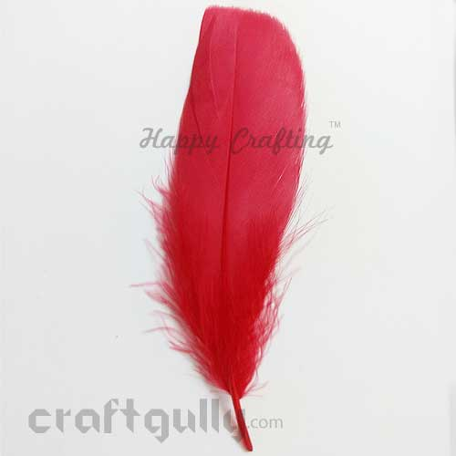 Feathers #12 - 130mm - Red - Pack of 1